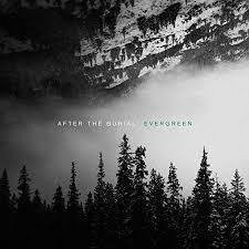 AFTER THE BURIAL Evergreen LP