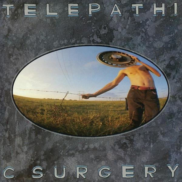 FLAMING LIPS, THE Telepathic Surgery LP